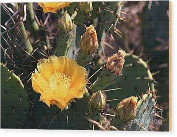 Texas Cactus Wood Print by Linda Cox