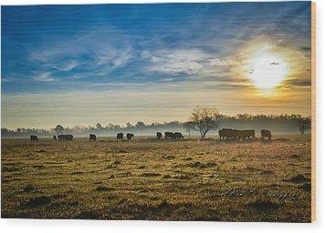 Wood Print featuring the photograph Texas Crisp Winter Morning by Allen Biedrzycki