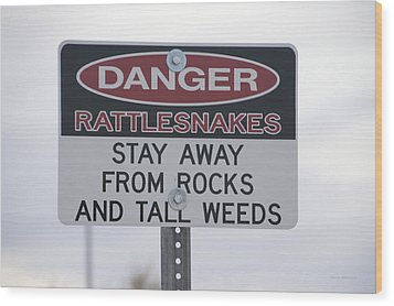 Texas Danger Rattle Snakes Signage Wood Print by Thomas Woolworth