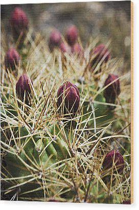 Texas Blooming Cactus Wood Print