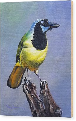 Texas Green Jay Wood Print