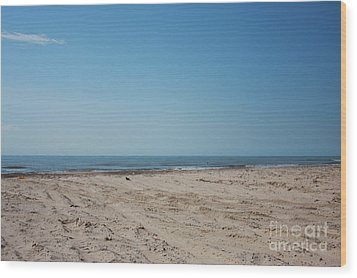 Texas Gulf Series Wood Print by Delaine Miller Sweat