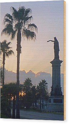 Texas Heros Monument - Galveston Wood Print by John Collins