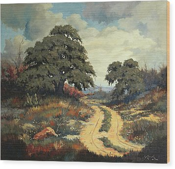 Texas Hill Country Wood Print by Bob Hallmark
