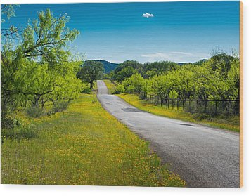 Wood Print featuring the photograph Texas Hill Country Road by Darryl Dalton