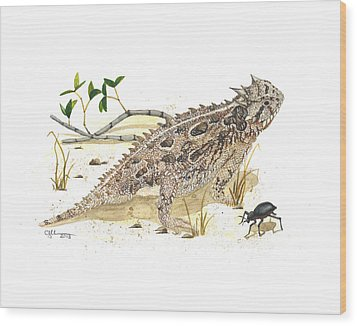 Texas Horned Lizard Wood Print by Cindy Hitchcock