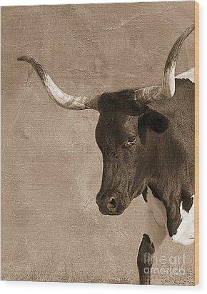 Texas Longhorn #6 Wood Print by Betty LaRue