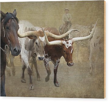 Texas Longhorns Wood Print by Angie Vogel