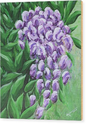 Texas Mountain Laurel Wood Print