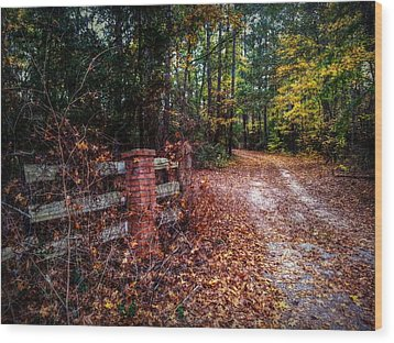 Texas Piney Woods Wood Print by Linda Unger