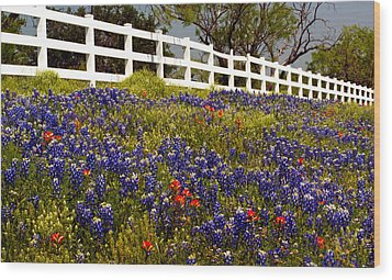 Texas Spring Wood Print by Brian Kerls
