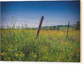 Texas Spring Fling Wood Print by Allen Biedrzycki