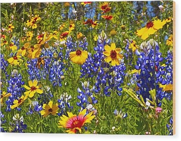 Wood Print featuring the photograph Texas Wildflowers by John Babis