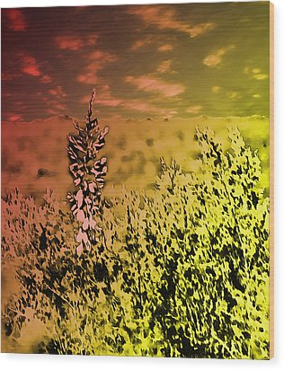 Wood Print featuring the photograph Texas Yucca Flower by Bartz Johnson