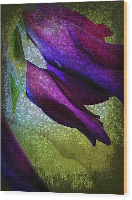 Textured Gladiola Buds Wood Print by Shirley Sirois