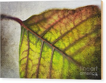Textured Leaf Abstract Wood Print by Scott Pellegrin