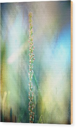 Textured Meadow Wood Print by Angela Williams Duea