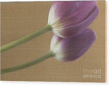Textured Purpletulip Wood Print by Eden Baed