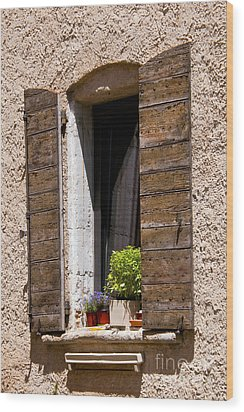 Textured Shutters Wood Print by Bob Phillips