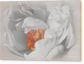 Wood Print featuring the photograph Textured Summer Rose by Eden Baed