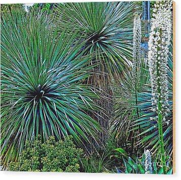 Textures Wood Print by Claudette Bujold-Poirier