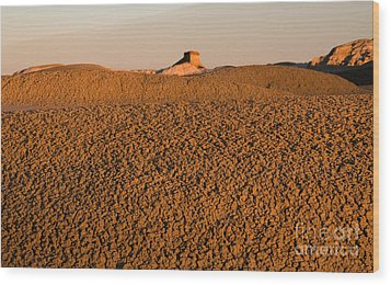 Textures In The Bisti Wilderness Wood Print by Vivian Christopher