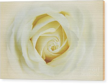 Textured White Avalanche Rosd Wood Print