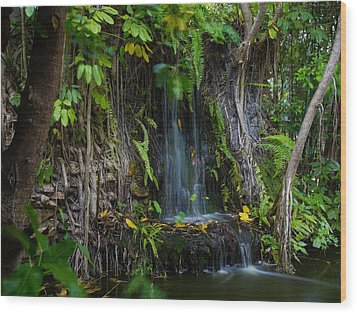 Thailand Waterfall Wood Print by Mike Lee