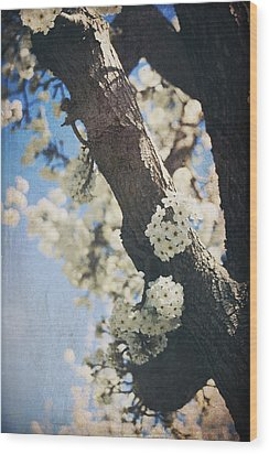 That March Wood Print by Laurie Search