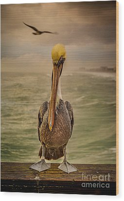 That's Mr. Pelican To You Wood Print