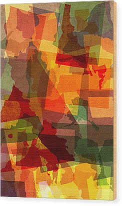 The Abstract States Of America Wood Print by Design Turnpike