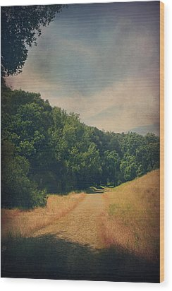 The Adventure Begins Wood Print by Laurie Search