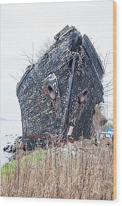 The Ancient Mariner's Ship Wood Print