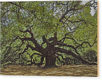 The Angle Oak Wood Print