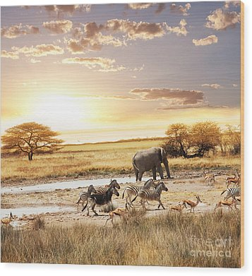 The Animals In Safari Wood Print by Boon Mee