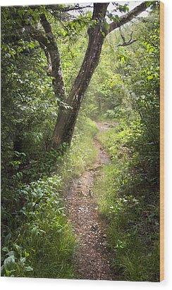 The Appalachian Trail Wood Print by Debra and Dave Vanderlaan