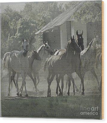 The Arabian Horses Fairytale Wood Print by Angel  Tarantella