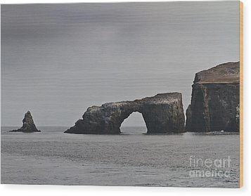 The Arch At Anacapa Island Wood Print by Mitch Shindelbower