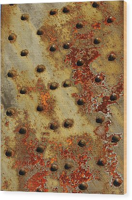 The Arid Plains Of Rust Wood Print by Charles Lucas