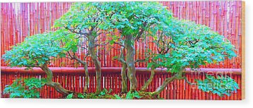 The Art Of Bonsai Wood Print by Ann Johndro-Collins