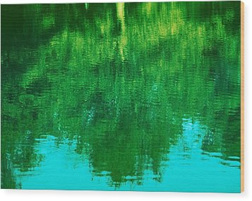 Wood Print featuring the photograph Art Of Nature by Kellice Swaggerty