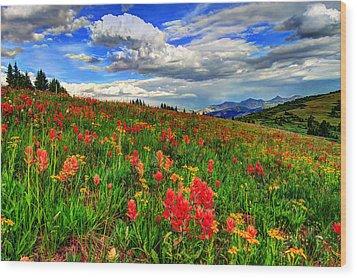 The Art Of Wildflowers Wood Print by Scott Mahon