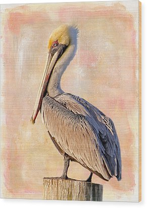 Birds - The Artful Pelican Wood Print by HH Photography of Florida