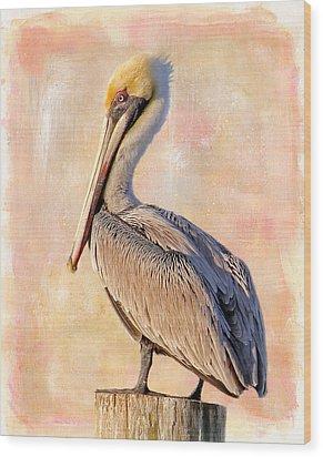 Birds - The Artful Pelican Wood Print
