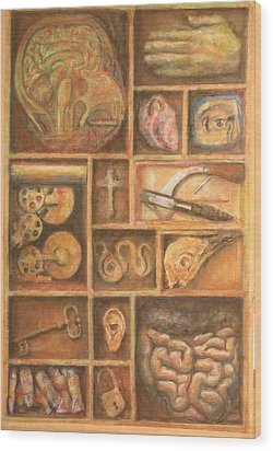 The Artist Cabinet Wood Print by Paez  Antonio