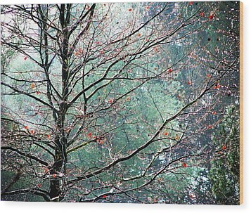 The Aura Of Trees Wood Print by Angela Davies