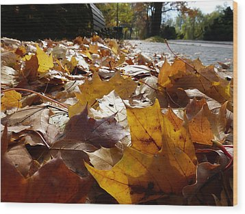 Wood Print featuring the photograph The Autumn Carpet by Janina  Suuronen
