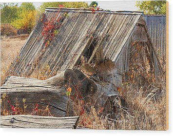 Wood Print featuring the photograph The Autumn Of Nebraska by Bill Kesler