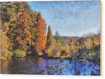 The Bald Cypress Wood Print by Daniel Eskridge