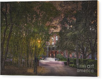The Bamboo Path Wood Print by Marvin Spates